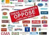 Monsanto'ya  Karşı 2015 Yürüyüşünde Geri Sayım Başladı