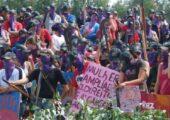 La Via Campesina: Şirketlerin Gücü Demokrasiyi Öldürüyor