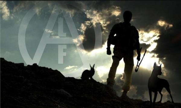 ALF-clouds-deer-rabbit