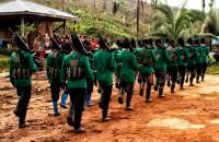 Yeni Halk Ordusu (NPA)