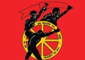Birleşik Mücadele Deneyimleri: Güney Afrika Sendikalar Kongresi (COSATU)