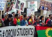 Etiyopya: Gambella Halk Kurtuluş Hareketi (GPLM) Basın Açıklaması Yaptı