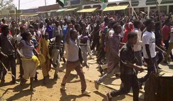 OromoProtests_Guji_2016_1