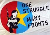 Emperyalist Saldırganlık ve Devrimci Mücadele, 25.02.2016