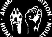 ABD: Hayvan Hakları Eylemcilerine Hapis Cezası