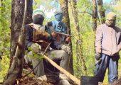 Şili : Mapuche Halkı Silahlanmaya Devam Ediyor