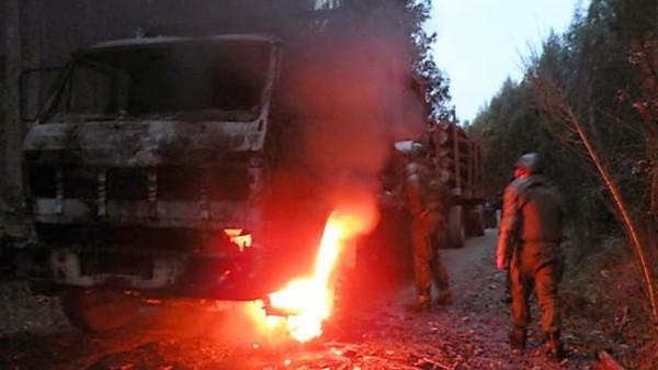 Yakılan kereste yüklü kamyonlar