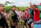 Brezilya: MST Toprak Reformu İçin İki Büyük İşgal Eylemi Yaptı