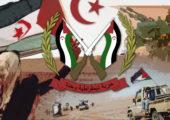 Batı Sahra: Polisario Rabat'la Diyaloğa Hazır