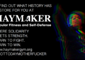 ABD: Şikago'da Haymaker Kolektifi Faşist Saldırılara Karşı Özsavunma Eğitimlerine Başladı