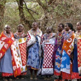 Bir Mücadele Alanı Olarak Kadın Kooperatifleri - I
