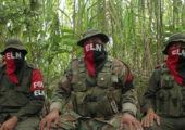Kolombiya: ELN, Askeri Saldırılara Son verilsin!