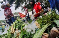 Filipinler: Toprağı Savunmak, Agroekolojik Halkın Gıda Rejimini İnşa Etmek