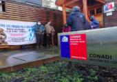 Şili: Mapuçe Politik Tutsaklar Açlık Grevini Ölüm Orucuna Çeviriyor