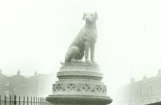 Hayvan Hakları Hareketinin Tarihi: İngiltere Örneği