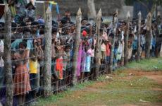 Tamil Ülkesi, Tamil Elam Kurtuluş Kaplanları ve 2008/09 Savaşı Üzerine-2