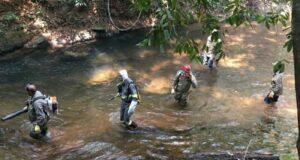 Brezilya: Orman Yangınlarına Karşı İtfaiye Antifa Tugayları