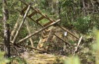 Almanya: Hayvan Kurtuluş Cephesi 13 Avcı Gözetleme Kulesini İmha Etti